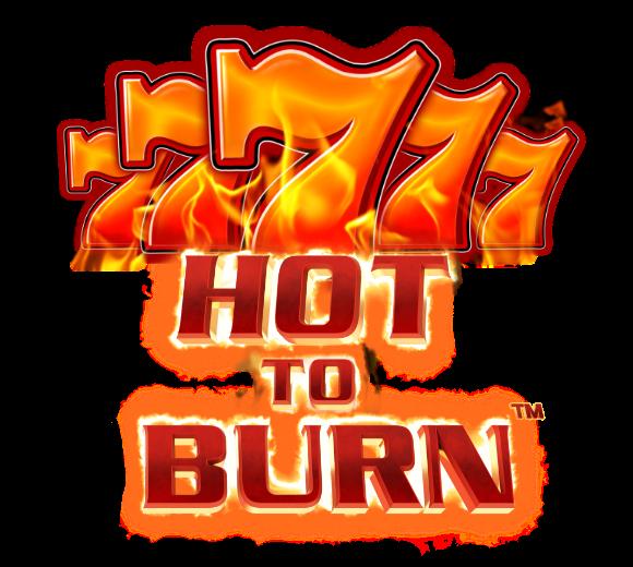 Hot to Burn Logo
