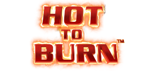 Hot to Burn Logo